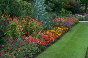 gardening Richmond
